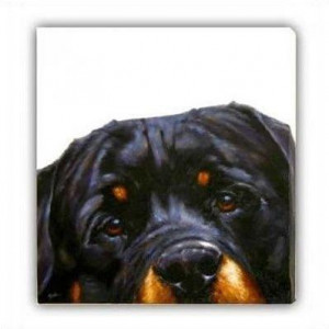 Rottie (Canvas) - Rottweiler - Box Canvas