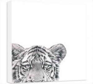 Laying Low - Tiger - Box Canvas
