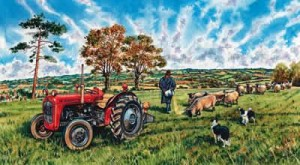 massey ferguson 35x, chris feeding suffolk sheep - print