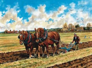Suffolk Horses Ploughing - Print