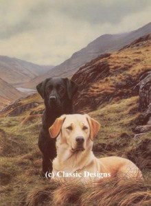 friends - labradors - mounted