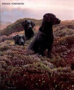 return of the three musketeers - black labradors - mounted