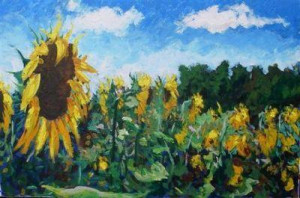 sunflowers in france - print