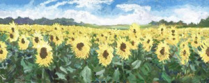 sunflower sanctuary - unstretched canvas