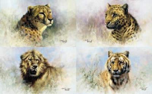 big cats portfolio (set of 4) - mounted