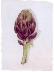 Artichoke - Mounted