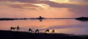 Elegance Of Evening's Retreat - Impala Antelopes - Mounted
