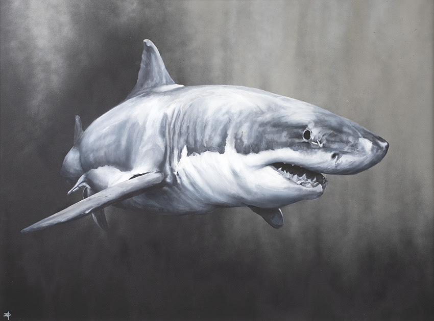 Carcharodon Charcharias - Artist Proof - Mounted by Dean Martin *Mad Artist