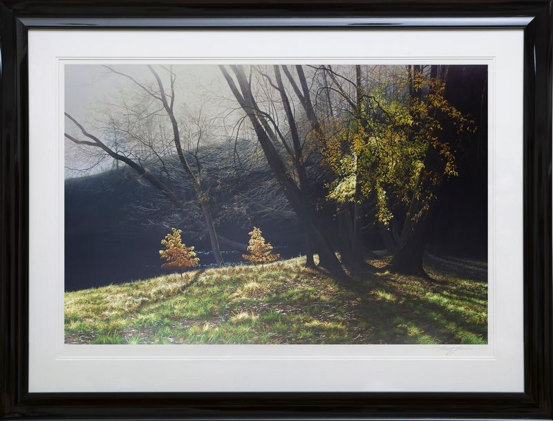 Depths Of Autumn - Black Framed by Paul James