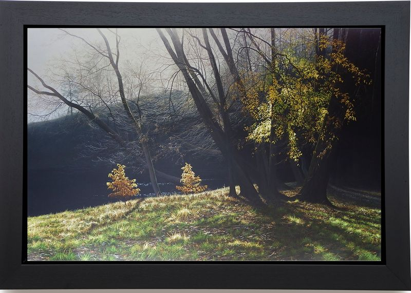 Depths Of Autumn - Canvas - Black Framed Box Canvas by Paul James