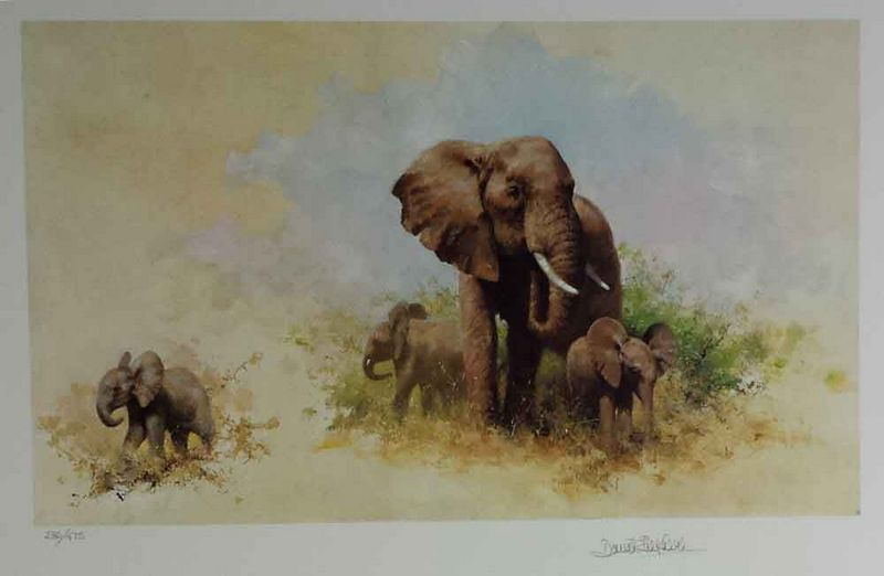 Elephant And Babies - Print only by David Shepherd