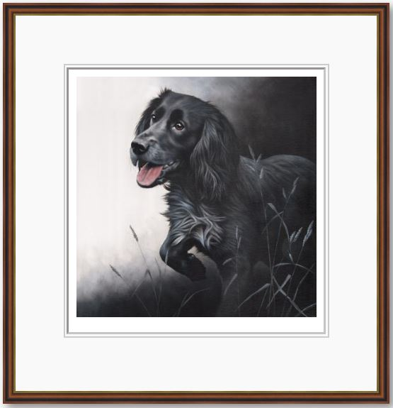 Field Sports - Cocker Spaniel - Framed by Nigel Hemming