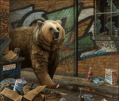 Grizzly - Box Canvas by Paul James