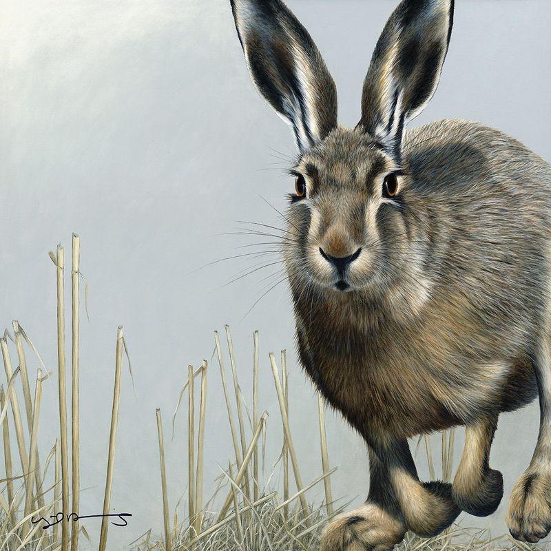 Hare - British Wildlife Series - Original - Framed by Nigel Hemming