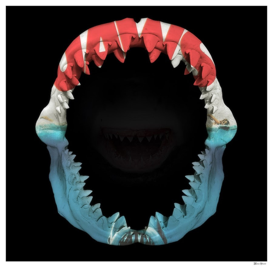Jaws - Black Background - Large by Monica Vincent