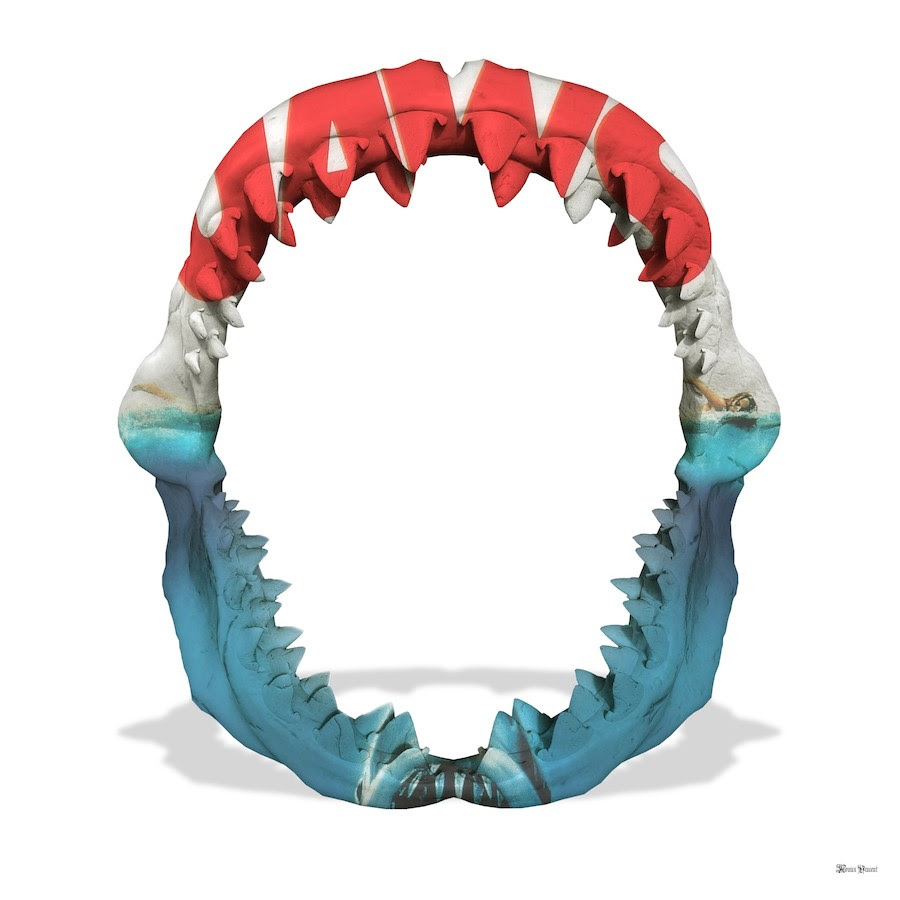 Jaws - White Background - Small - Framed by Monica Vincent