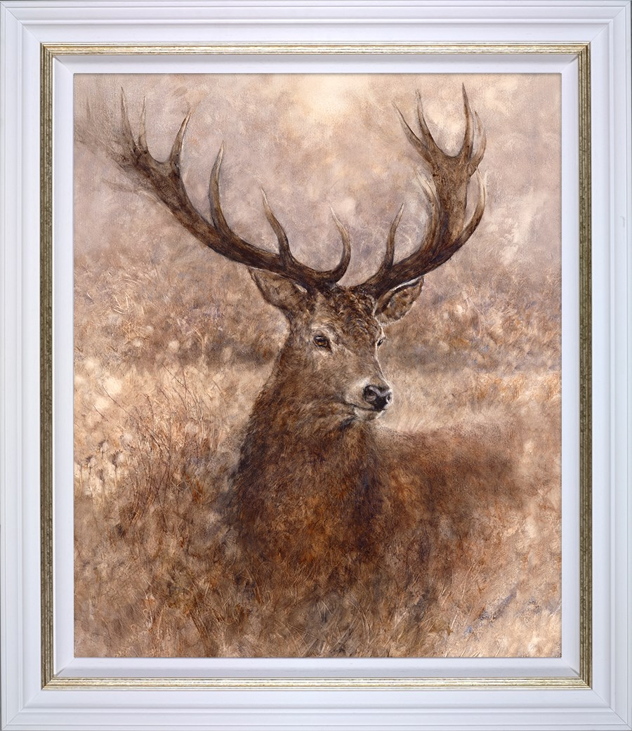 Noble - Framed by Gary Benfield