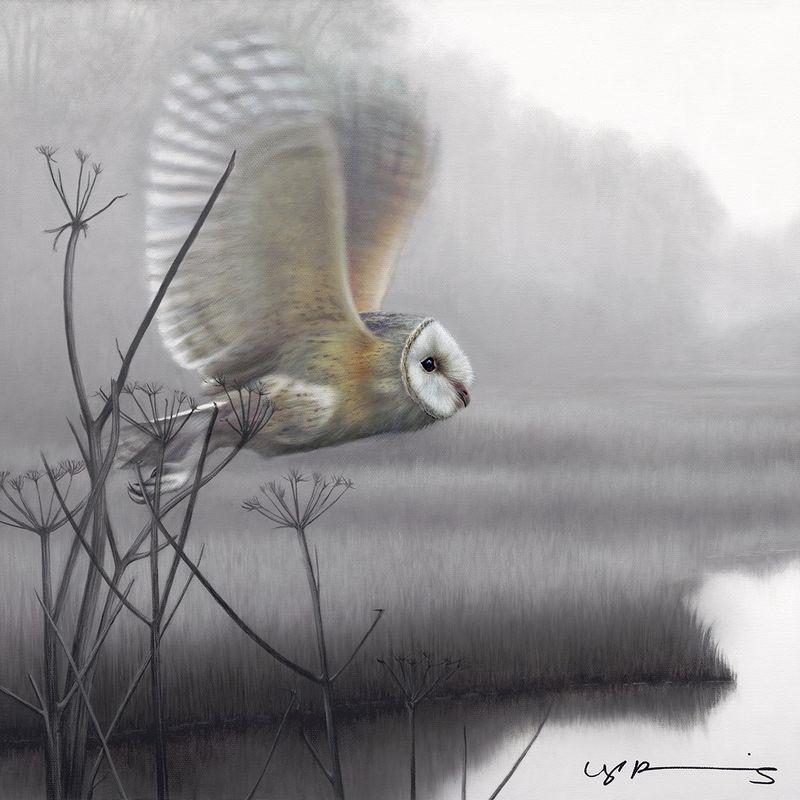 Owl - Taking Flight - Original by Nigel Hemming