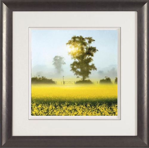 Shining Through - Framed by John Waterhouse