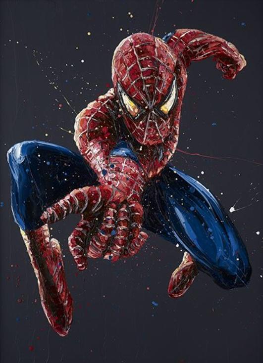 Spiderman 14 - Canvas - Framed by Paul Oz