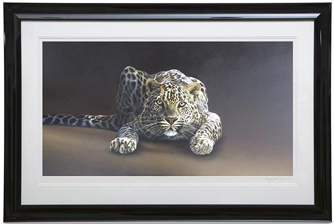 Spotted - Framed by Paul James