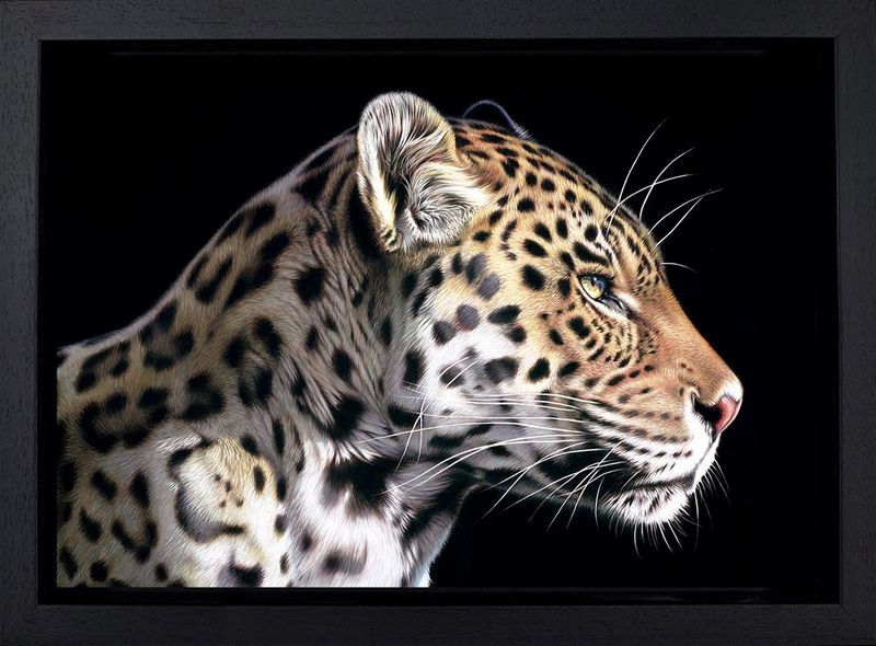 The Wild Side I - Framed Box Canvas by Darryn Eggleton