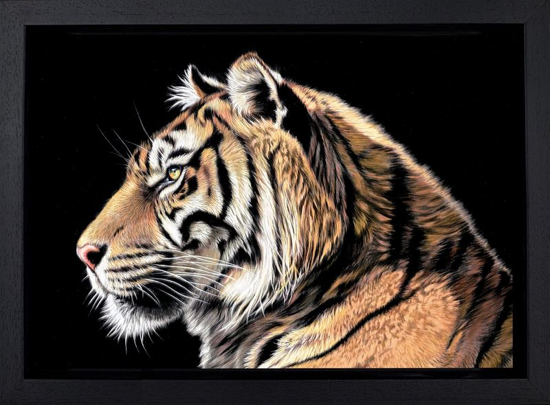 The Wild Side II - Framed Box Canvas by Darryn Eggleton
