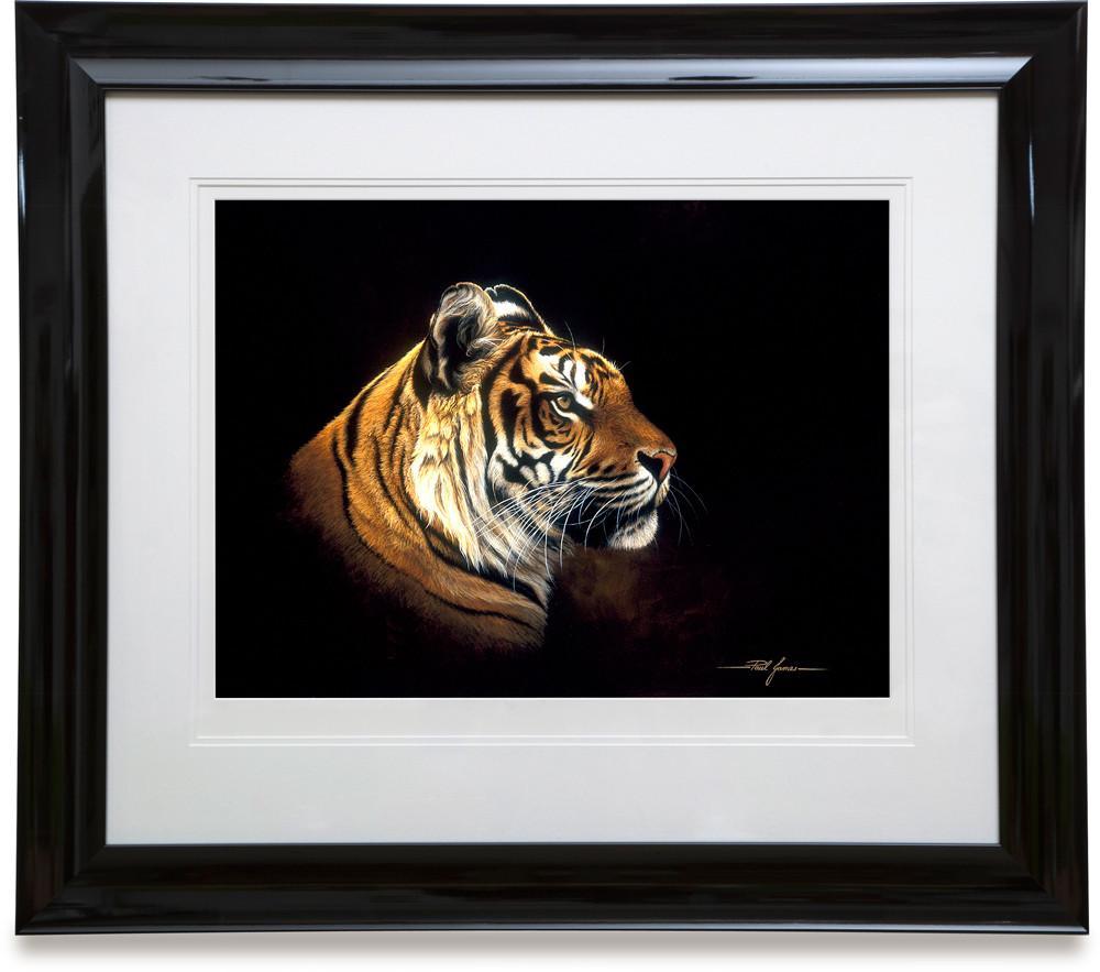 Tiger Profile - Paper - Framed