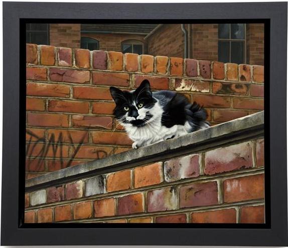 Towny Tom - Framed Box Canvas
