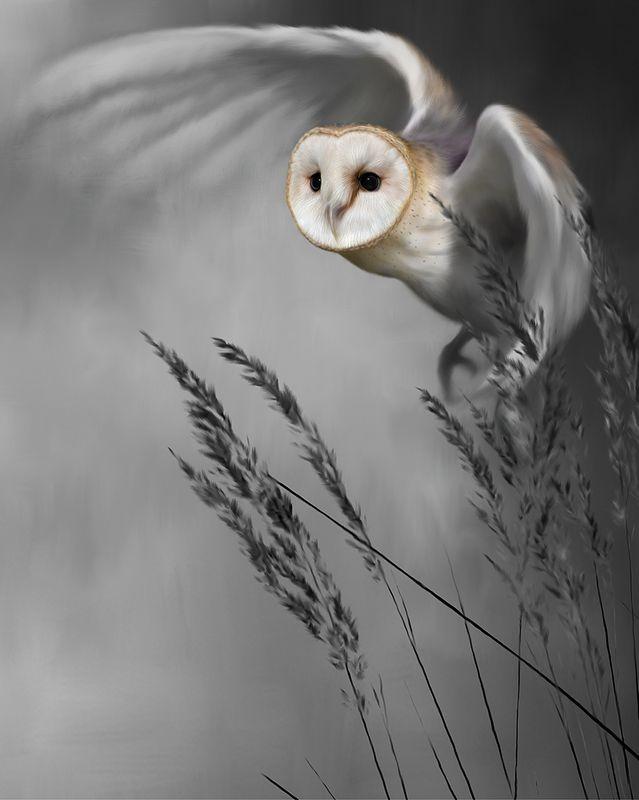 Twilight Flight by Nigel Hemming