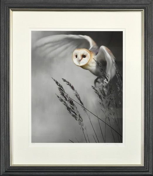 Twilight Flight - Grey Frame - Framed by Nigel Hemming