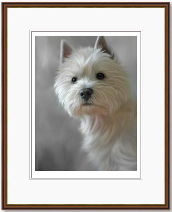 West Highland Terrier (40th Anniversary Image) - Framed