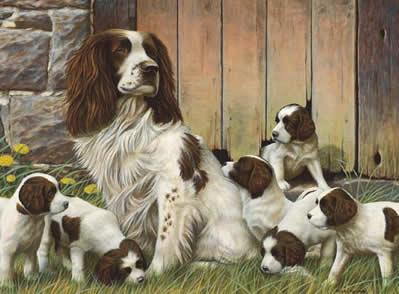Dad's Army - Springer Spaniels (Original) by Nigel Hemming
