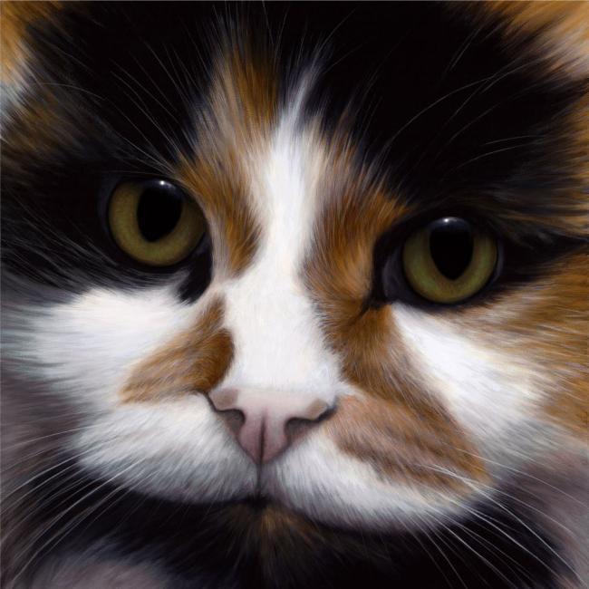 'Peggerty' - Larger Than Life - Cat