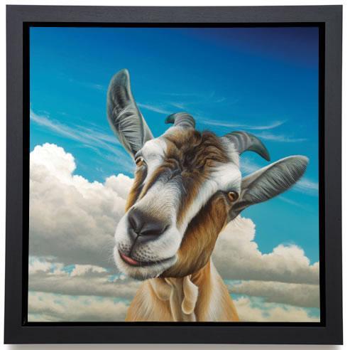 Dave - Canvas - Framed