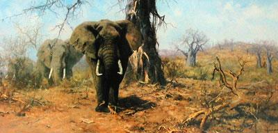 The Land Of The Baobab Tree by David Shepherd