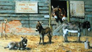 Happy Home For Donkeys by David Shepherd