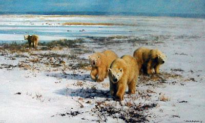 Lone Wanderers Of The Arctic by David Shepherd