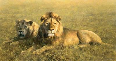 Serengeti Friends by David Shepherd