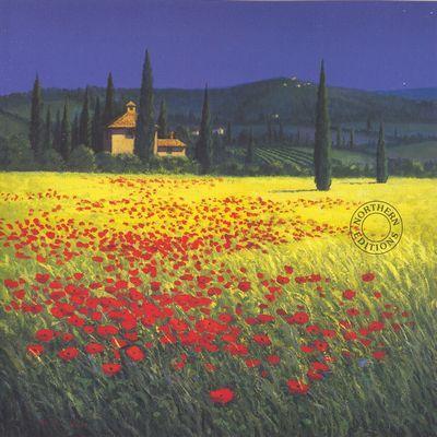 Tuscan Poppyfield - Large