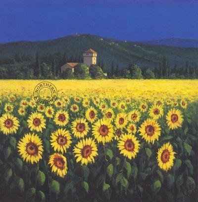 Tuscan Sunflowers - Large