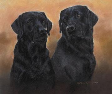 Matched Pair by Debbie Gillingham