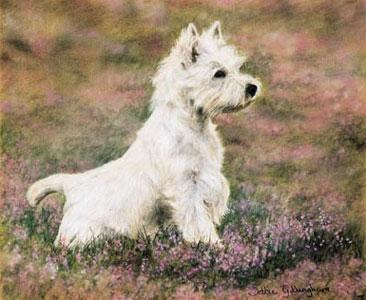 Classic Pose - Paws For Thought by Debbie Gillingham