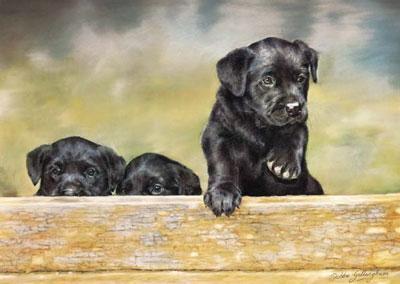 Braveheart by Debbie Gillingham