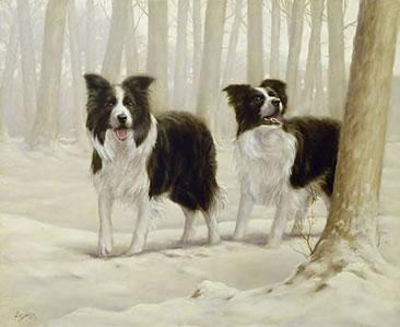 Winter Friends I - Border Collies by John Silver
