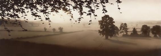 Nature's Glory by John Waterhouse