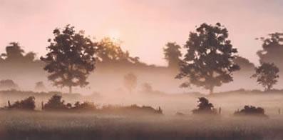 Early Summer by John Waterhouse