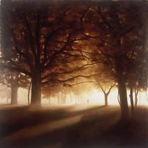 A Walk Through The Park by John Waterhouse