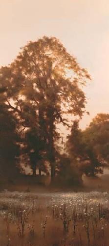 Thistledown by John Waterhouse