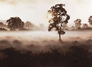 Morning Mist (Church Couple) by John Waterhouse